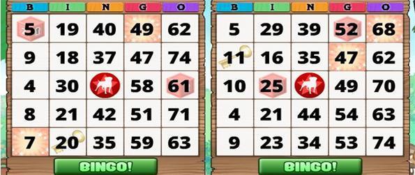 Zynga Bingo - Zynga is bringing bingo back!