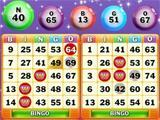 Bingo Nights on Wingo Bingo!