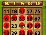 Play bingo and slots in Bingo Island
