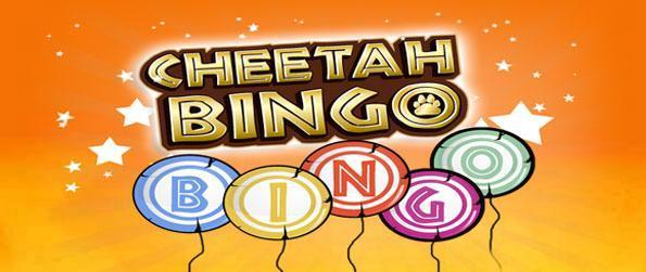 Cheetah Bingo - Enjoy a classic take on bingo with a safari twist.