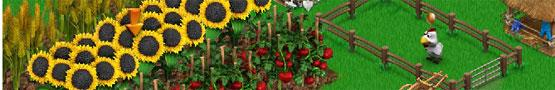 Gratis Boerderijgames - Big Farm vs Farmandia