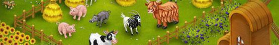 Jeux de ferme Gratuits - Animals in Farm Games