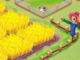 Wheat field in Wonderful Farm