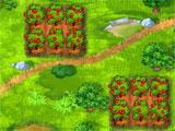 Fruits Inc Apple Patches