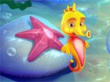 Flying Fish Quest 2 Seahorse