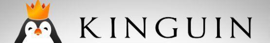 Kinguin: The Largest Alternative Games Marketplace