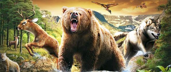 Lets Hunt - Hunt wild animals to collect massive prizes in this awesome game that's full of thrill.