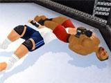 Wrestling Revolution 3D: Combo Moves