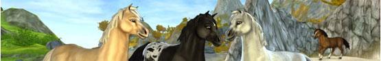 Online Paarden games - My Favorite Horse Games