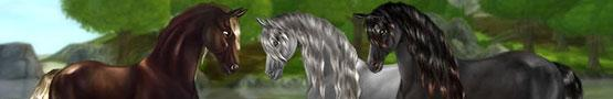 Learning More About Horses in Horse Sims