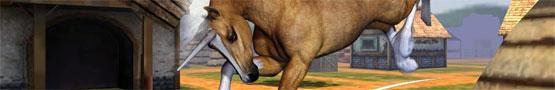 Horse Games: Yay or Neigh preview image