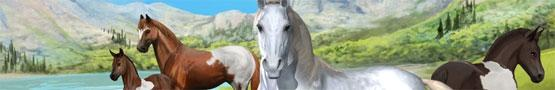 Online Paarden games - Our Horse Games Community