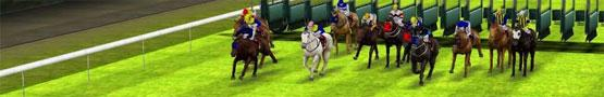 Giochi di Cavalli Online - How Often Should You Train Your Horse?