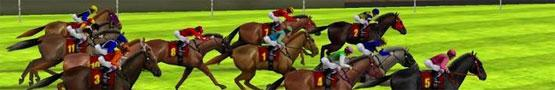 Online Paarden games - Is There An Ideal Weight for Training Horses