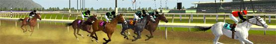 Online Paarden games - Types of Horse Games