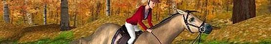 Horse Games Online - Popular Horse Competition Breeds