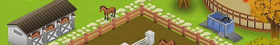 Online Paarden games - Learning More About Horse Games: Facilities
