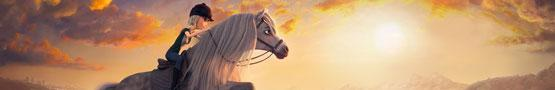Horse Games Online - What Makes Star Stable a Success?
