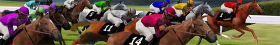 Giochi di Cavalli Online - Types of Horse Races