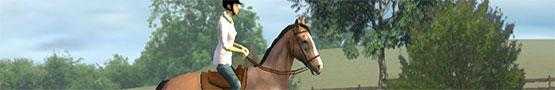 Jeux de chevaux en ligne - Best Horse Games on Android