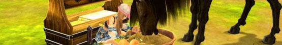 Horses and Treats preview image