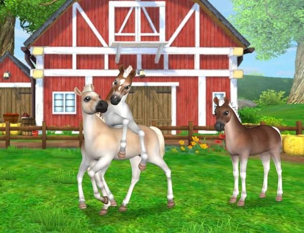 New Foals in Star Stable Horses