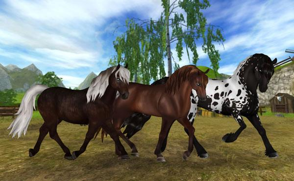 best us casino online hold your horses