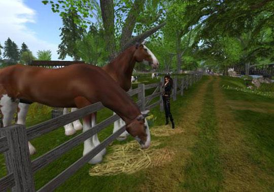 virtual horse riding games online
