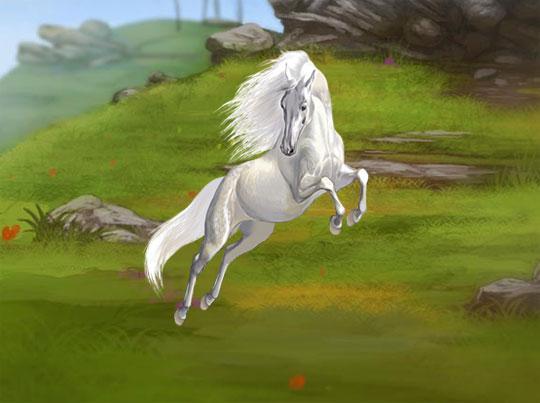 Gorgeous Stallion in Howrse
