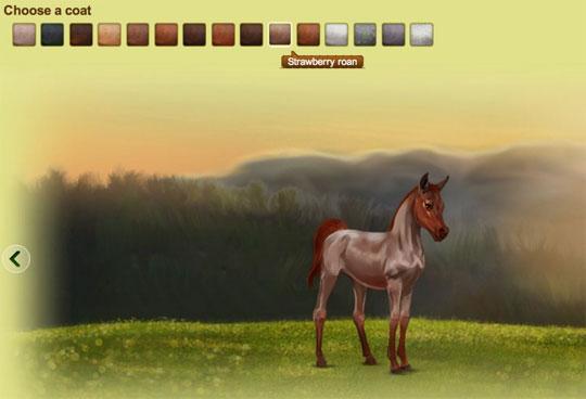 Choosing a Foal in Howrse