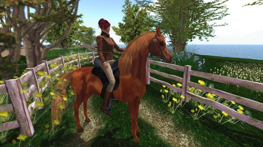 Beautiful Arabian Horse in Second Life