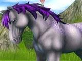 Grey/ purplish wild horse