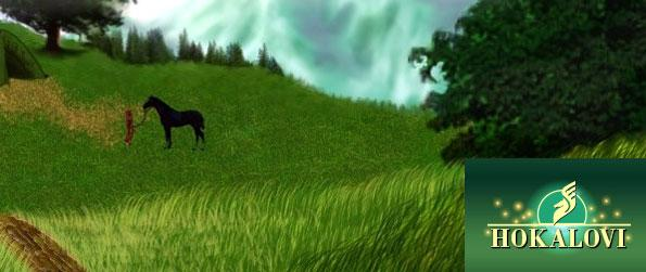 Hokalovi - Breed and raise your own horses in this fun filled game that you'll be able to enjoy in the comfort of your browser.