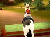 Jumping over obstacles in Imagine Champion Rider