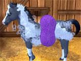 Cleaning your foal in Star Stable Horses