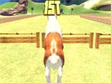 Jumping in Pony Horse Kids Race 3D
