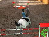Horse Jumping 3D: Gameplay