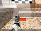 The finish line in Horse Jumping 3D