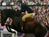 Jumping over fences in My Horse