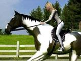 My Horse Friends: Riding your own horse