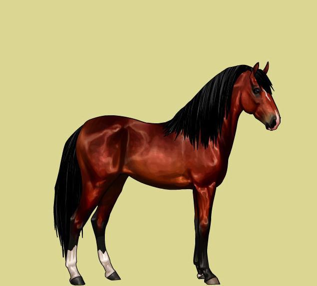 Favorite horse game jeux de chevaux en ligne enqu tes - Jeux de bella sara gratuit ...