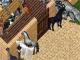 Ultima Online hanging out