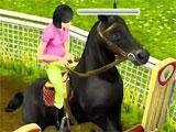 Showjumping on Sims Free Play