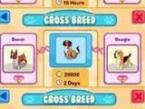 Pet Shop Story: Cross Breeding your Favorite Pets