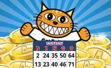 Automatové a Bingo hry