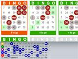Boom Bingo trying for a bingo