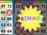 Bingo Friends Bingo