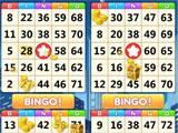 Bingo Friends Bingo Cards