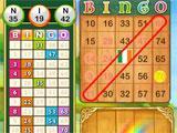 GSN Casino Bingo