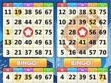 Playing with 3 Bingo Cards in Bingo Win